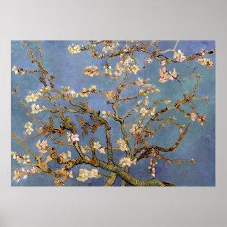 Van Gogh Almond Blossom Painting Poster