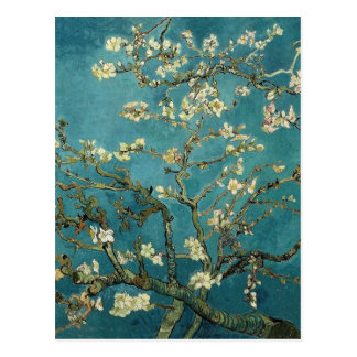 Van Gogh Almond Branches In Bloom Postcard