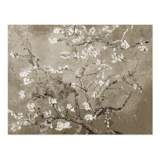 Van Gogh Almond Branches in Bloom - Sepia Postcard