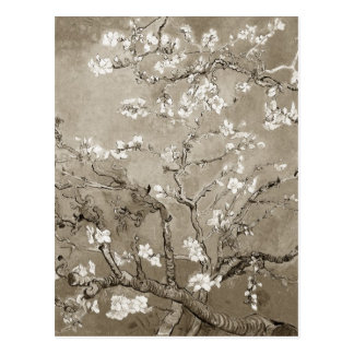 Van Gogh Almond Branches in Bloom - Sepia Postcard