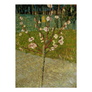 Van Gogh, Almond tree in blossom Poster