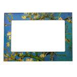 Van Gogh; Árbol de almendra floreciente, flores de Marcos Magnéticos Para Fotos