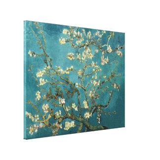 Van Gogh - árbol de almendra floreciente Lona Estirada Galerias