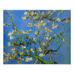 Van Gogh - árbol de almendra floreciente Impresiones