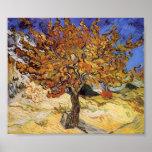 Van Gogh - árbol de mora Posters