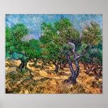 Van Gogh - arboleda verde oliva Impresiones
