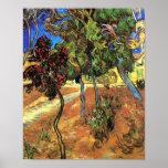 Van Gogh - árboles en el jardín Posters