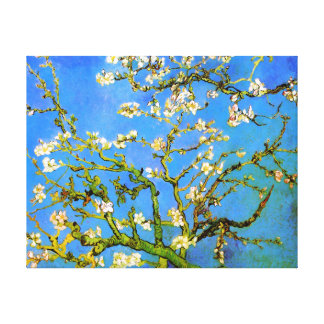 Van Gogh: Blossoming Almond Tree Branches Canvas Print