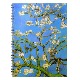 Vincent van Gogh: Blossoming Almond Tree Branches
