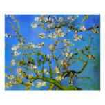 Van Gogh: Blossoming Almond Tree Branches Poster