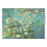 Van Gogh Blossoming Almond Tree (F671) Fine Art Cards