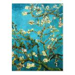 Van Gogh Blossoming Almond Tree (F671) Fine Art Postcard
