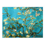 Van Gogh Blossoming Almond Tree (F671) Fine Art Post Cards
