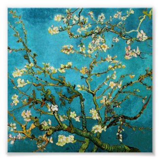 Van Gogh Blossoming Almond Tree (F671) Fine Art Print