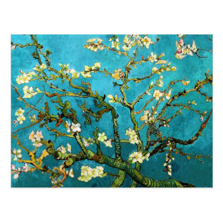 Van Gogh Blossoming Almond Tree Fine Art Postcard