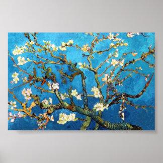 Van Gogh Blossoming Almond Tree Fine Art Poster