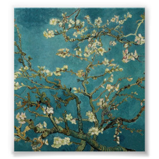 Van Gogh - Blossoming Almond Tree Posters