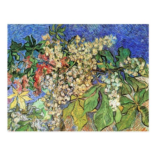 Van Gogh; Blossoming Chestnut Branches Post Card