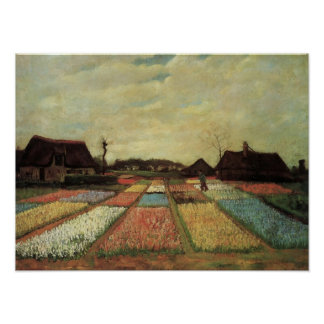 Van Gogh - Bulb Fields Poster