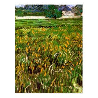 Van Gogh Campo de trigo en Auvers con Casa Blanca Postales