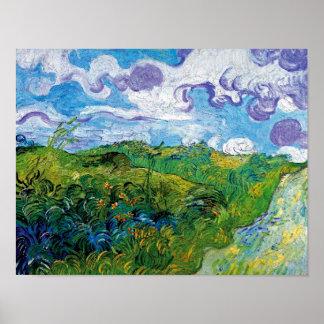 Van Gogh - campos de trigo verdes en Auvers Póster