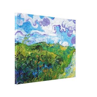 Van Gogh - campos de trigo verdes Impresión De Lienzo