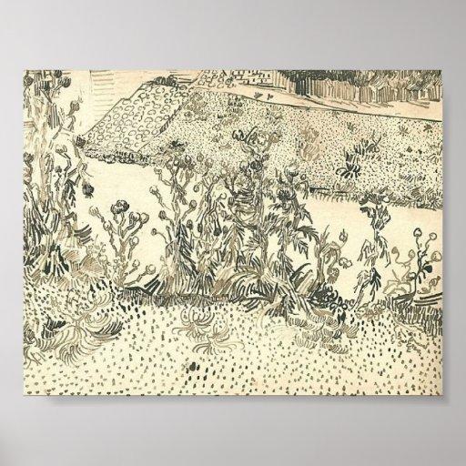 Van Gogh - cardos a lo largo del borde de la carre Impresiones