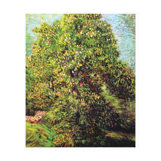 Van Gogh - Chestnut Tree In Blossom Canvas Print