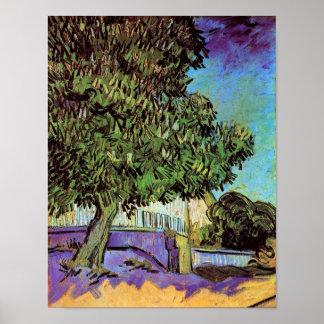 Van Gogh - Chestnut Tree In Blossom Print