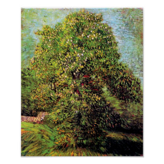 Van Gogh - Chestnut Tree In Blossom Poster