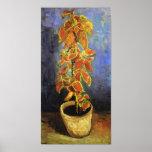 Van Gogh Coleus Plant in a Flowerpot Print