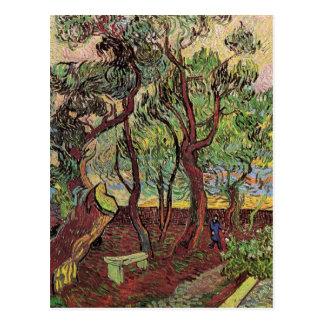 Van Gogh; Corner of Saint-Paul Hospital and Garden Postcards
