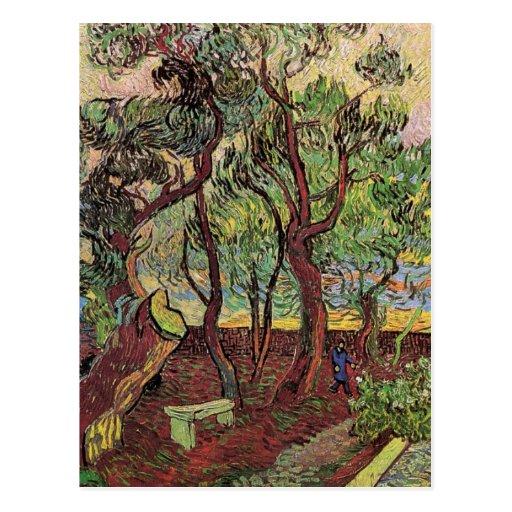 Van Gogh Corner of Saint-Paul Hospital and Garden Postcard