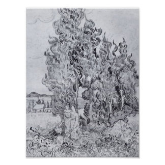 Van Gogh - Cypresses Poster
