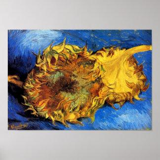 Van Gogh - dos girasoles cortados Poster