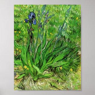 Van Gogh - el iris Impresiones
