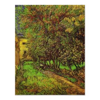 Van Gogh el jardín del hospital de Saint Paul Invitación 10,8 X 13,9 Cm