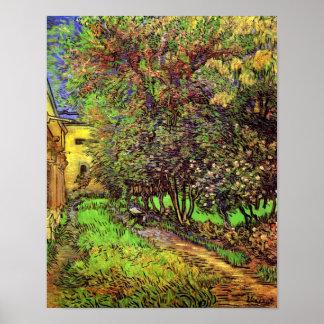 Van Gogh - el jardín del hospital de San Pablo Póster
