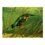 Van Gogh el martín pescador, arte del impresionism Tarjeta Postal