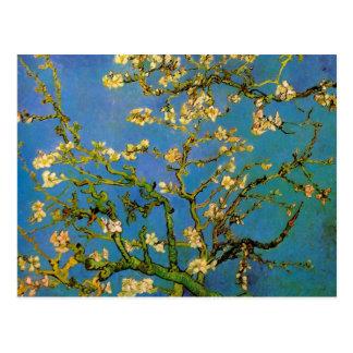Van Gogh florece el arte, árbol de almendra Tarjetas Postales