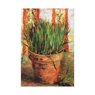 Van Gogh - Flowerpot With Chives Gallery Wrapped Canvas