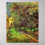Van Gogh Garden Of Saint-Paul Hospital Poster