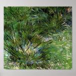 Van Gogh - grupos de hierba Impresiones
