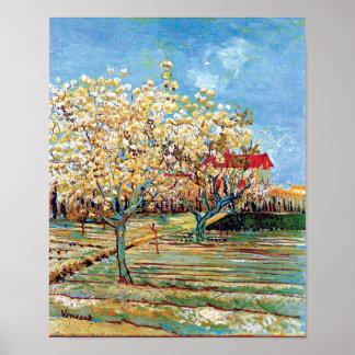 Van Gogh - huerta en flor Posters