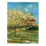 Van Gogh - huerta en flor Tarjetas Postales