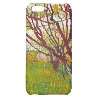 Van Gogh iPhone 5C Cases