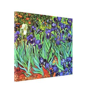 Van Gogh - iris Impresión En Lienzo Estirada