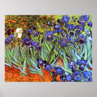 Van Gogh: Iris Posters
