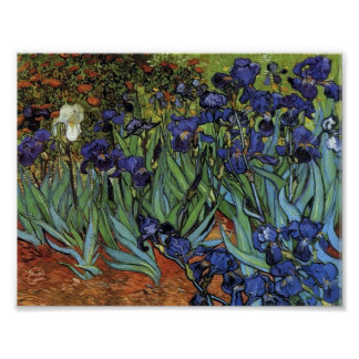 Van Gogh - iris Posters