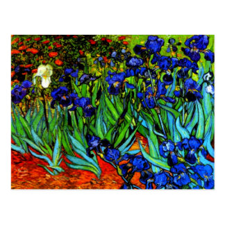 Van Gogh - iris Tarjetas Postales